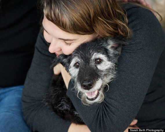 'Joy Sessions' Capture Last Moments Between Dying Pets & Their Owners