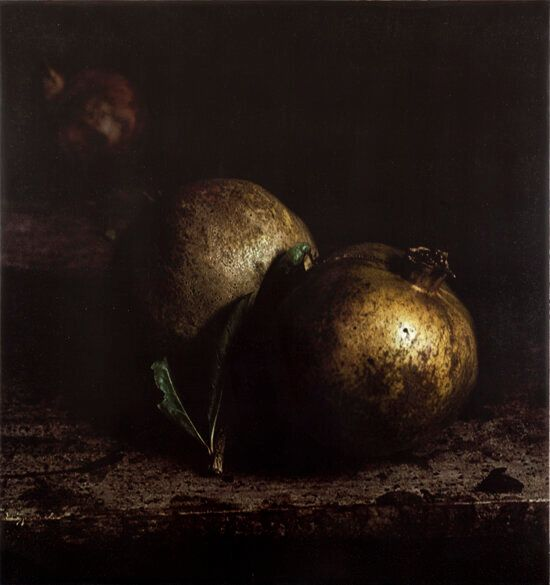Made in Spain: Nature Morte Photo Works by Craigie