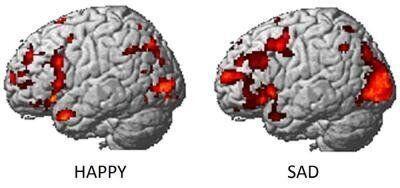 Brain Scans Can Reveal Your Emotions, Reveals Carnegie Mellon
