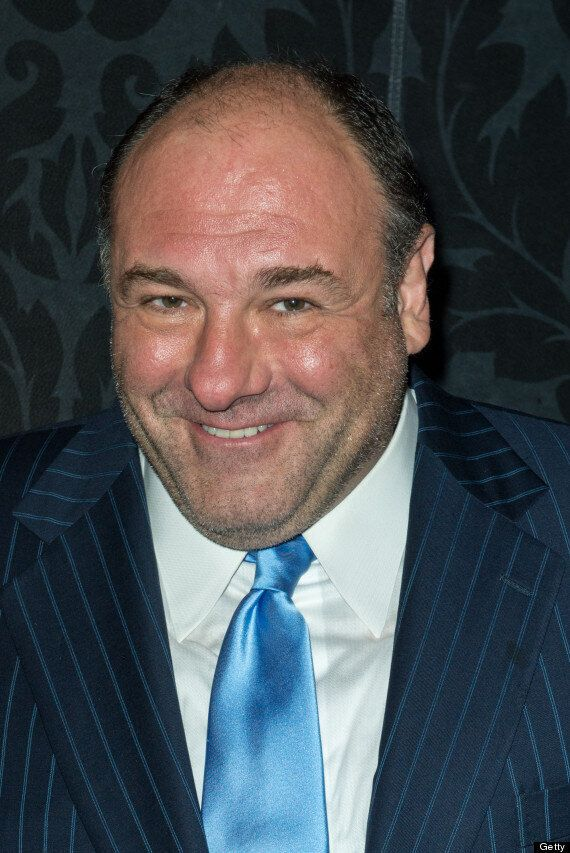 James Gandolfini Dead: Steve Carell Reveals He Was Due To Make Another Film With 'The Sopranos'