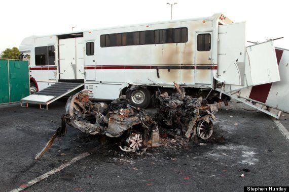 Horse Box Crash On M11 Leaves Two Dead, Man