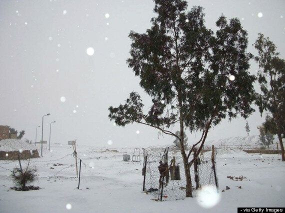 Snow In Egypt For The First Time In 100 Years, Reports Say