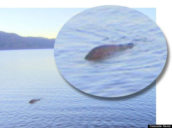 Loch Ness Monster Mystery 'Solved' By Italian Geologist Luigi Piccardi: But Could 'Nessie' Still