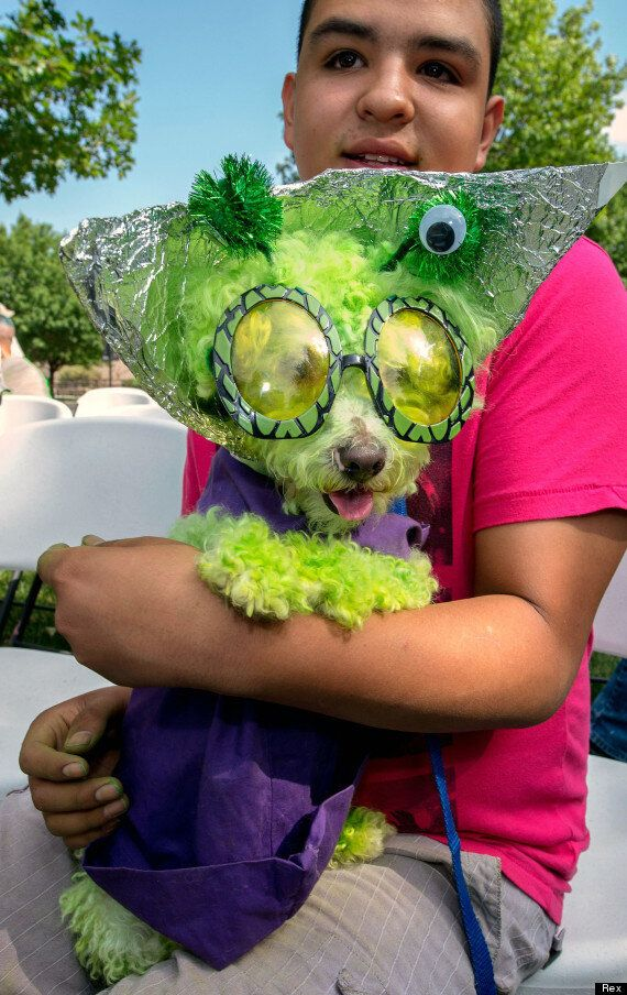 Roswell UFO Anniversary: Alien Pet Parade