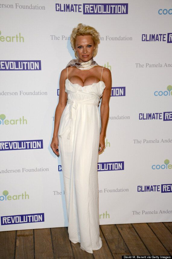 Pamela Anderson Gang-Rape Claims Being 'Investigated By