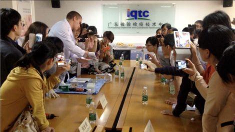 As Vietnam Bans Cruel Rabbit Eye Tests, Asia Moves Closer Toward Cruelty-Free