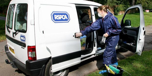 An RSPCA Officer prepares her van to enter Hunts Hill Farm in Normandy, Surrey, during the Foot and Mouth...