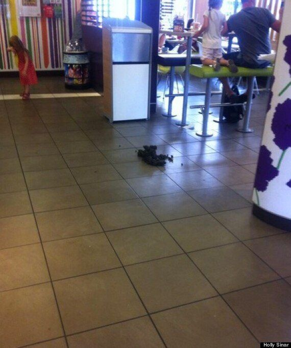 Woman Lets Horse Soil McDonalds Floor In Protest Over