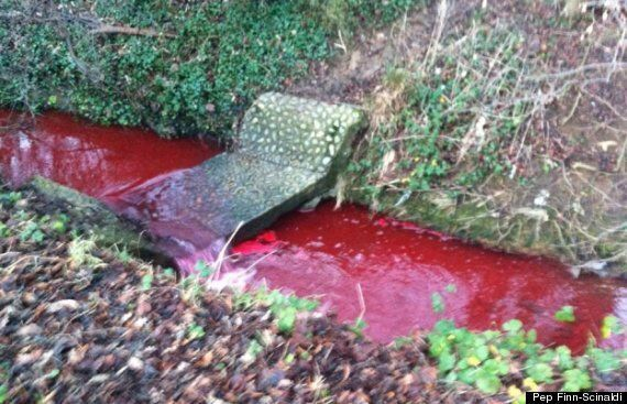'Blood Red' River Sparks Investigation In Northampton