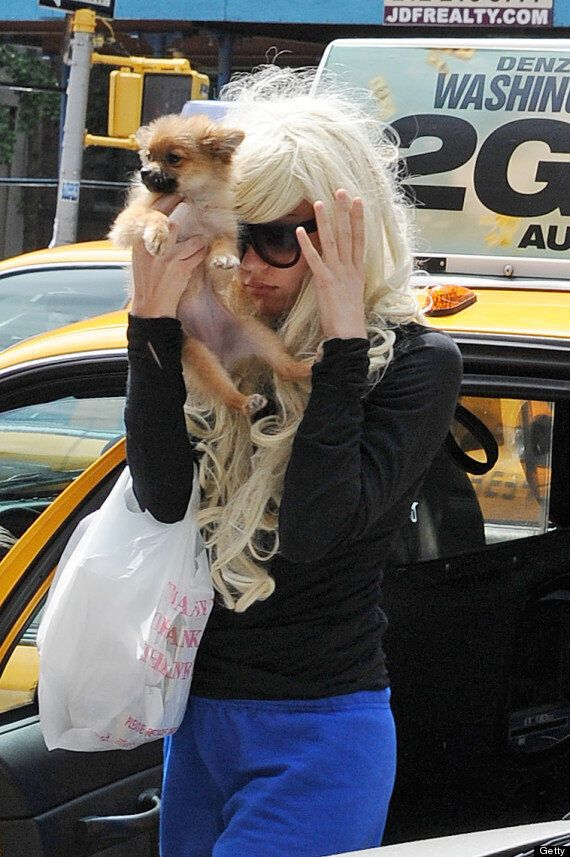 Amanda Bynes' Parents Step In, Reportedly Want To Seek Conservatorship
