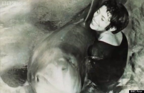 The Girl Who Talked To Dolphins (& Masturbated Them Too)