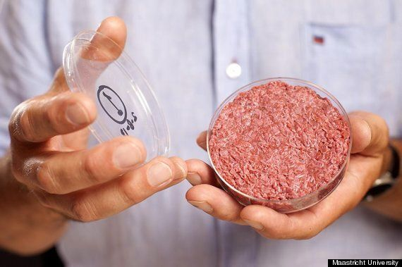 Test-Tube Hamburger: Lab-Grown Meat 'Cultured Beef' Dubbed 'The Future Of
