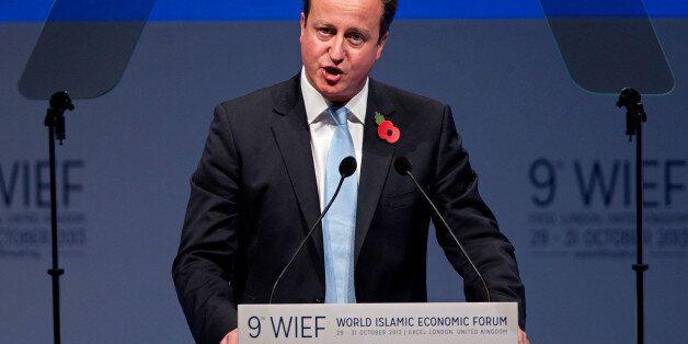 British Prime Minister David Cameron addresses delegates at the 9th World Islamic Economic Forum in London...