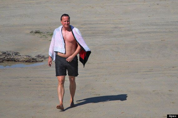 David Cameron Flaunts His Curves As He Shows Off His Beach Body (GRATUITOUS