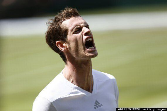 Andy Murray's Rant: 5 Possible Reasons Behind The