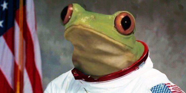 Did Frogstronaut Survive? Astronomer Ponders Nasa Photobomb Frog's Chances