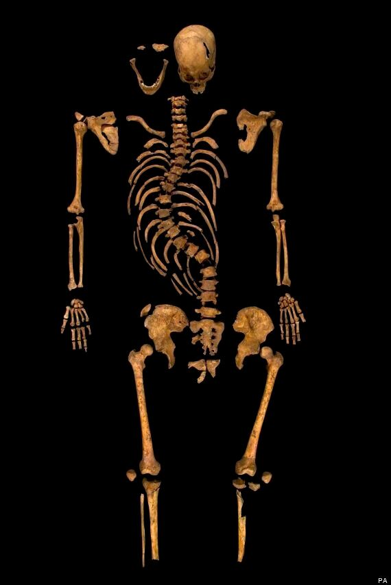 King Richard III's Genome To Be