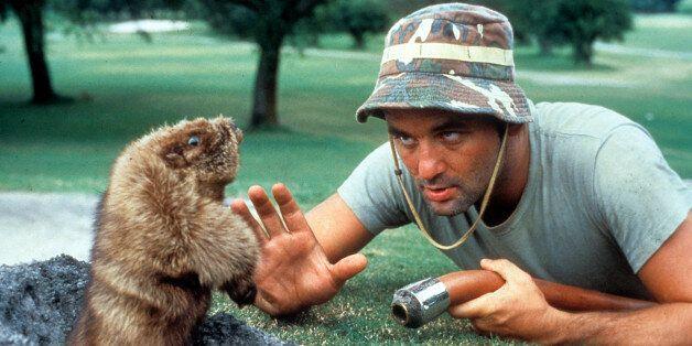 40 Of Bill Murray's Greatest Movie