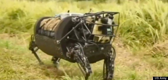 'Cujo' Robot Mule Starts Life Of Willing Servitude With US