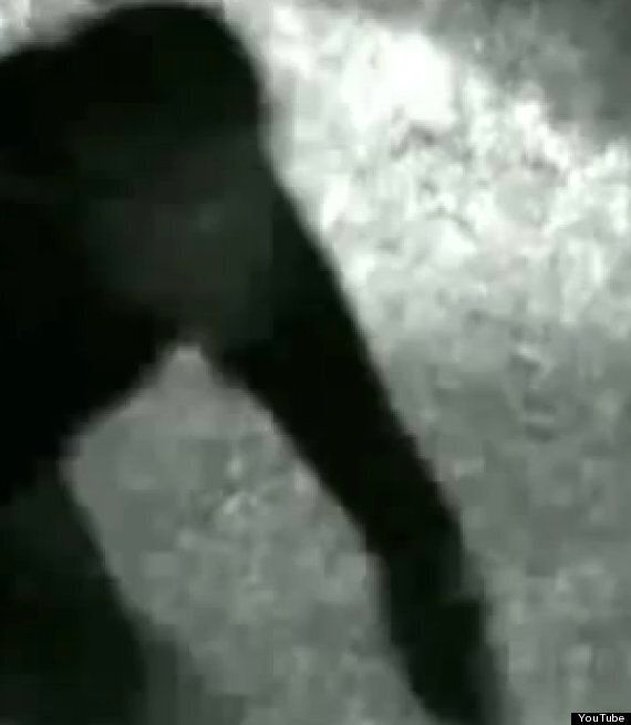 'Werewolf Footage Sparks Night-Time Curfew For Terrified Brazilian Residents'