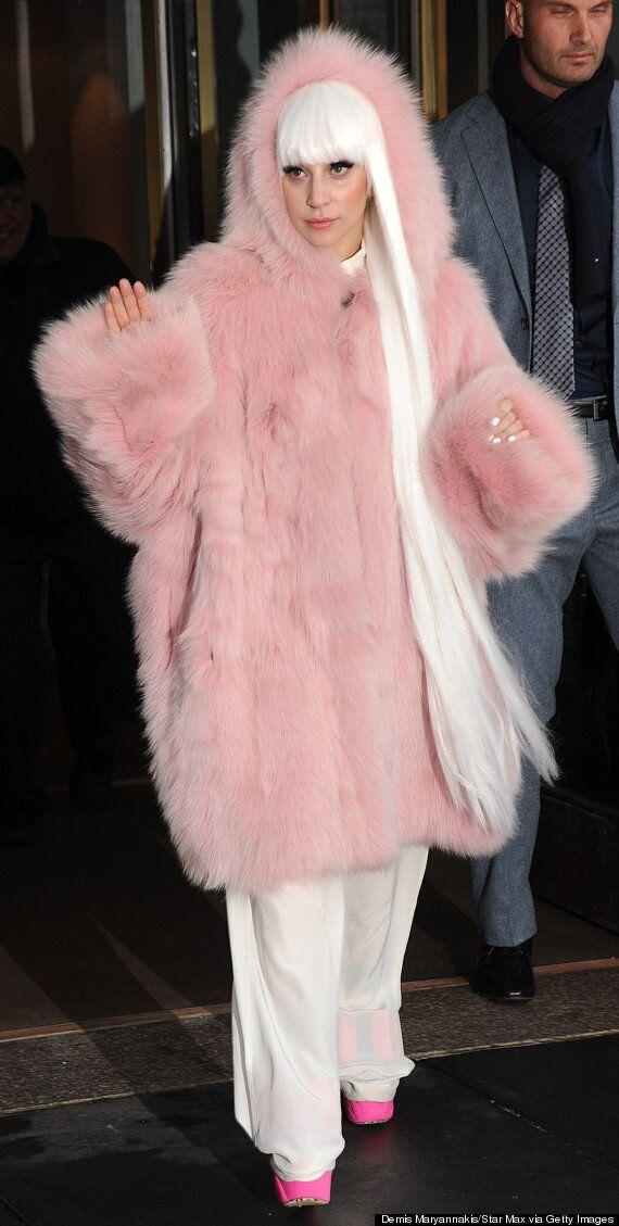Lady Gaga's 10 Pink Lookalikes