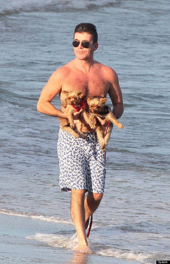 Simon Cowell Relaxes With Baby Eric, Lauren Silverman And Puppies On A Miami Beach (VIDEO,