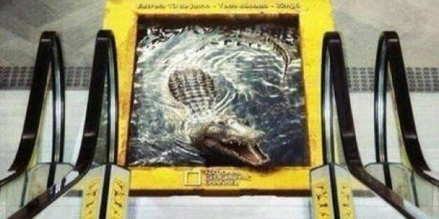 National Geographic Crocodile Ad On Escalator Is Too Realistic For