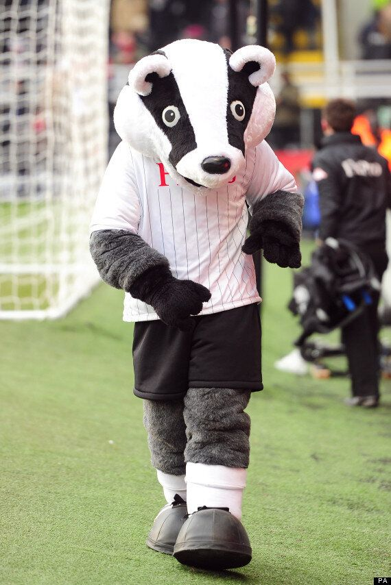 We've Found The Badger That Can Move Goalposts