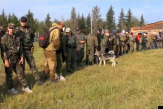 Heroic Puppy Saves Karina Chikitova, 3, Lost In Siberian Forest For 11