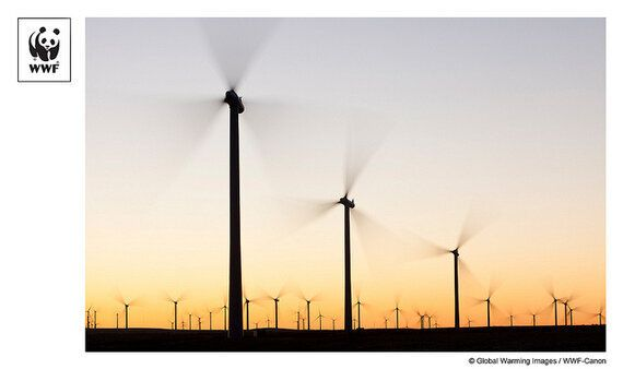 Is a World Powered by Renewable Energy