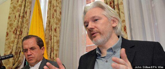 Julian Assange To Leave Ecuadorian Embassy: The Funniest Twitter