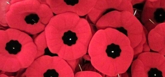 For Every Poppy's Petal, A Story of
