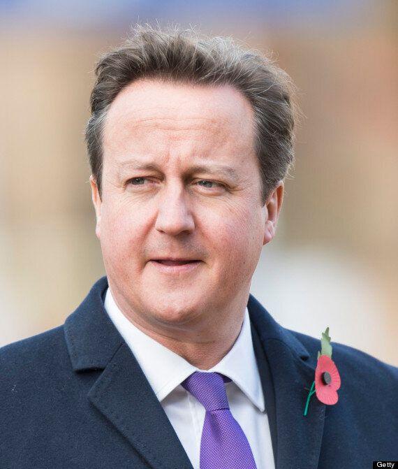 David Cameron Praises 'Incredible Work' Of Royal Marines After 'Appalling'