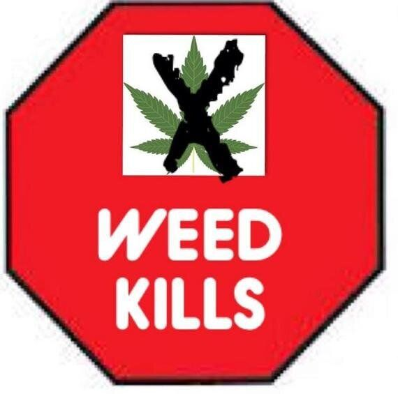 News Punch: G7, Police Shredding and Marijuana