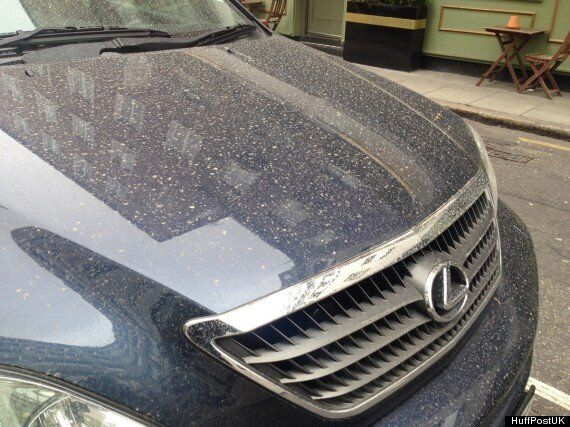 'Sahara Rain' Leaves Cars Coated In A Thin Film Of Desert Dust