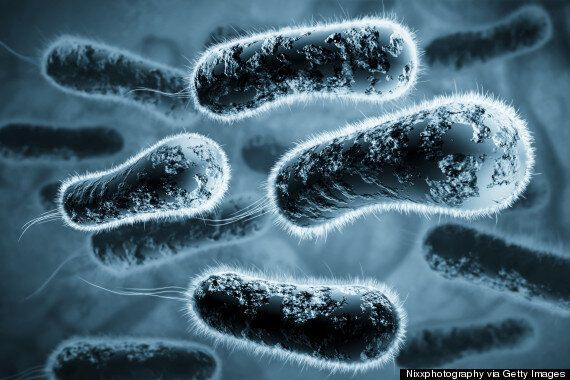 Long Lost Samples Of Deadly Viruses Discovered In