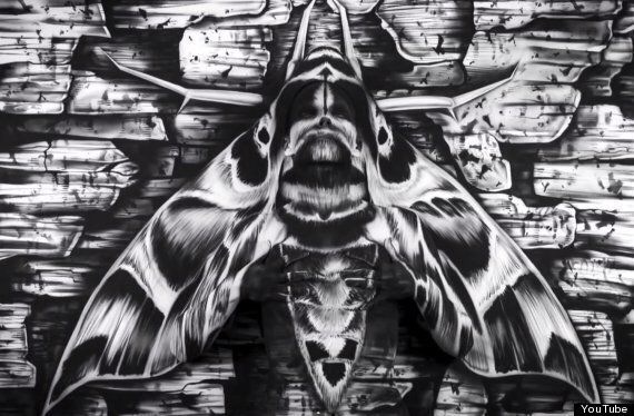 Moth Painting Conceals Body Painted Woman But You'd Be Excused For Not