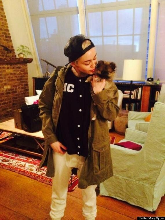 Miley Cyrus Gives Away New Dog Stating 'It's Too Soon' After Pet Pooch Floyd's Death