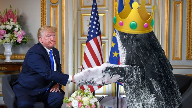 À cause d'une simple faute de frappe, Donald Trump a une fois de plus été moqué...