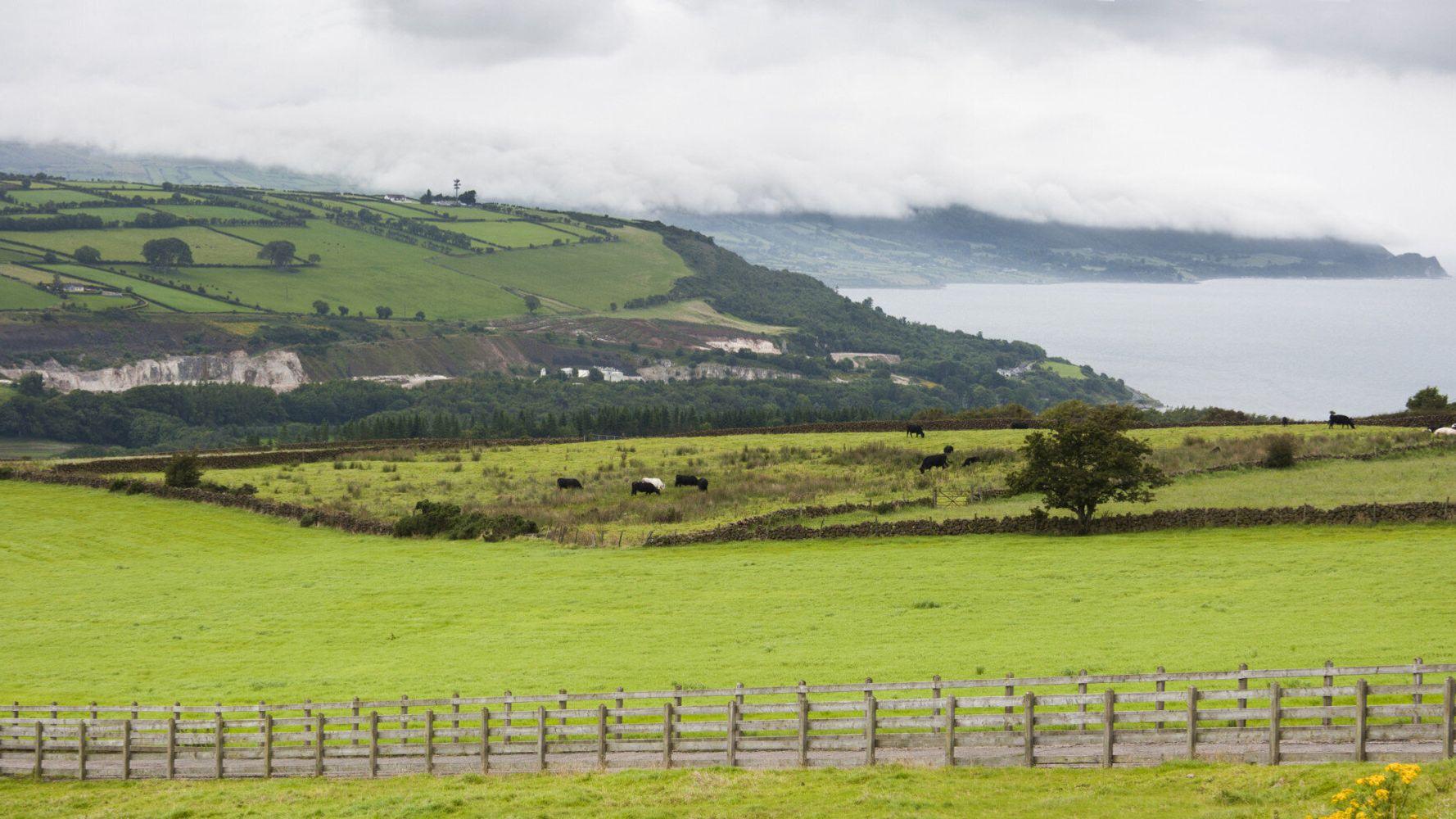 Ard na Sidhe, a County Kerry Fairy Tale | HuffPost Life