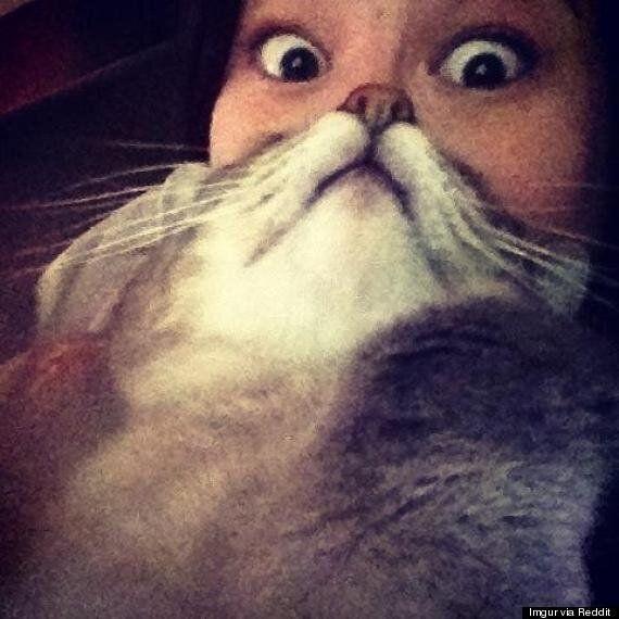 Optical Illusion of Cat + Woman = Real Life Cat Woman