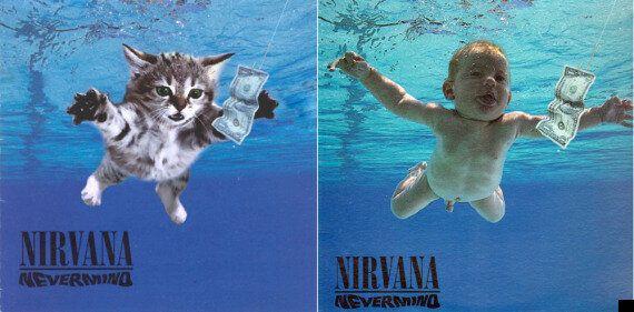 Kittens Cover Classics: Tumblr Recreates Albums With Tiny Felines