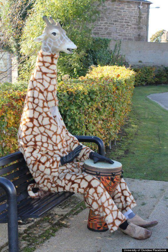 Good Giraffe Armstrong Baillie Travels Scotland Doing Good