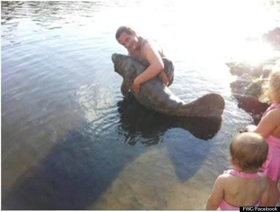 Ryan William Waterman Arrested After Posting Manatee Pictures On