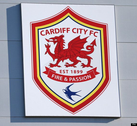 Cardiff City Could Change Name To 'Dragons', Says Owner Vincent