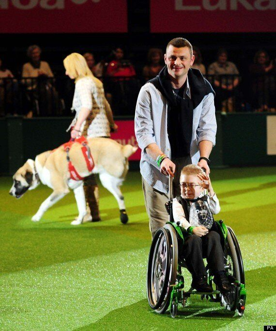 Three-Legged Dog, Haatchi, Wins 'Friends For Life' Crufts Award For 7-Year-Old Owner,
