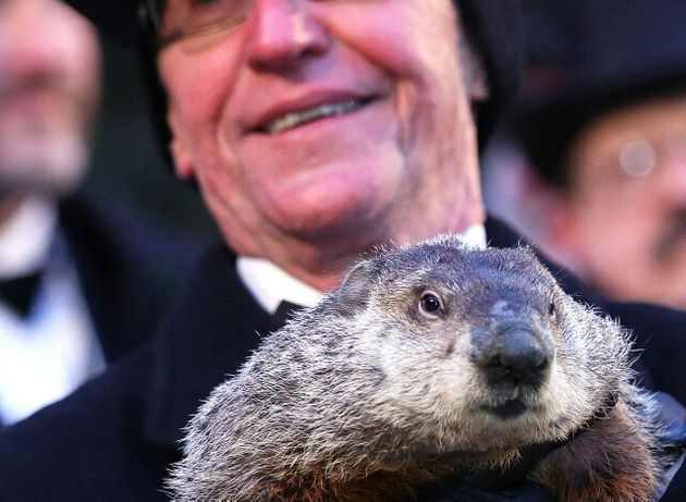 Groundhog Death Penalty Calls After Punxsutawney Phil Fails To Predict
