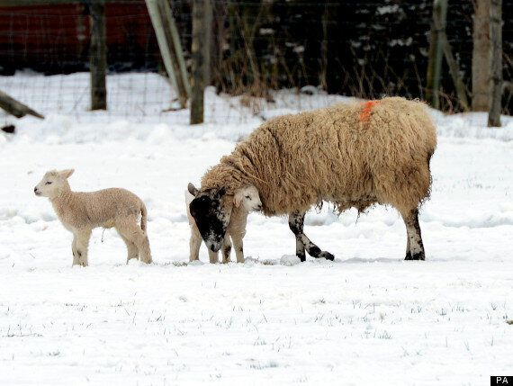 UK Weather: Freezing Temperatures To Continue After Coldest Easter Ever