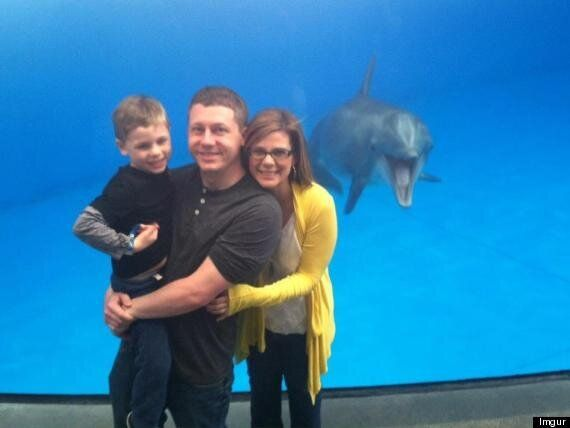 Photobombing Dolphin Leaps Into Family Aquarium Shot