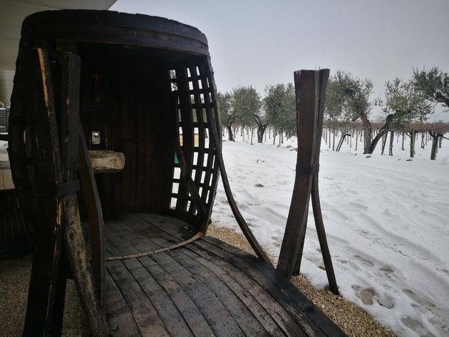 A história por trás da fonte na Itália que despeja vinho a qualquer hora – e de